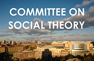 Committee on Social Theory
